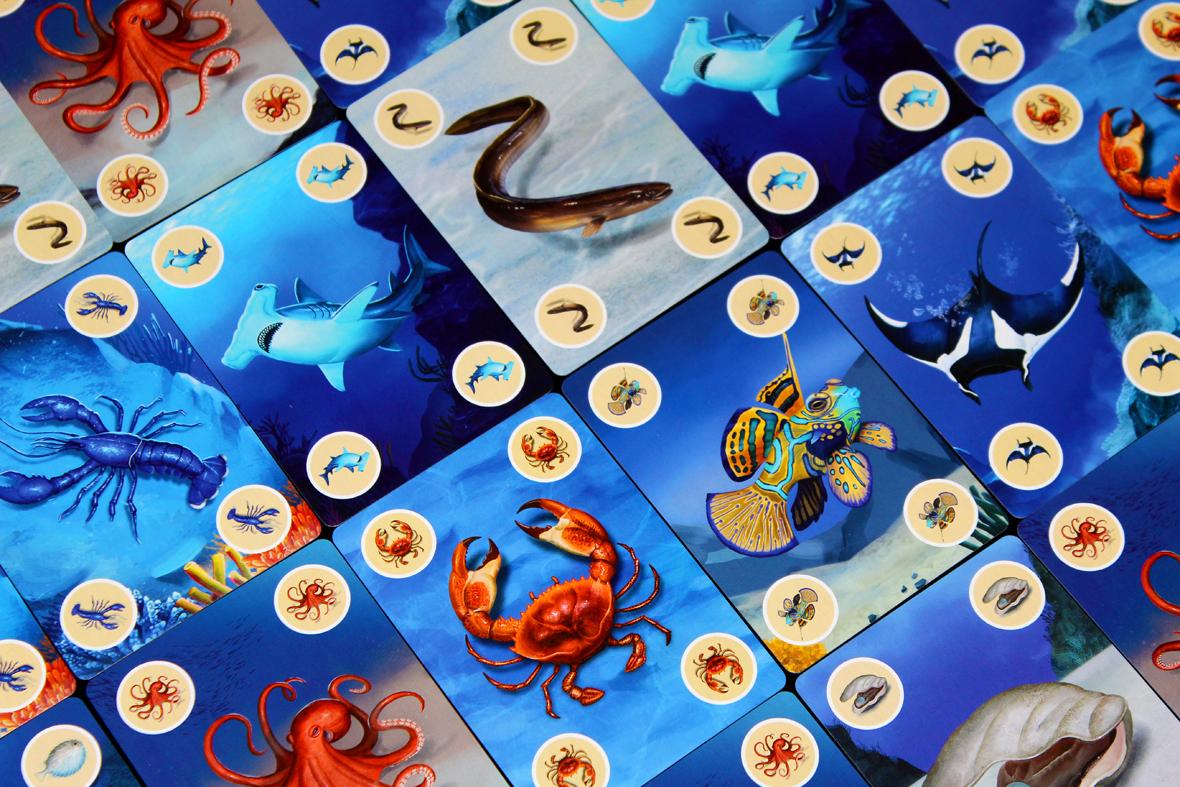 Species Cards